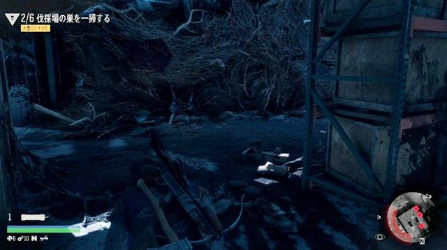 工場1階のフリーカーの巣