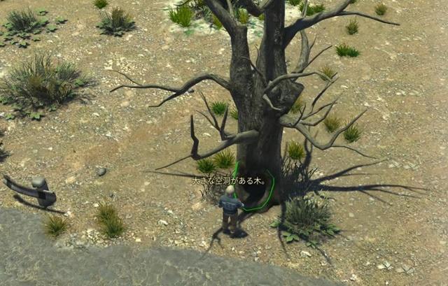 巨大な枯れ木